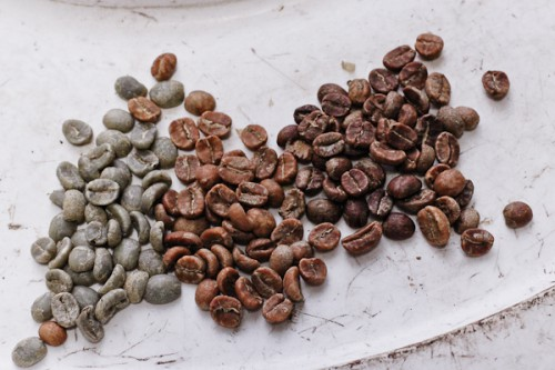 Roasted Coffee Beans versus raw coffee beans
