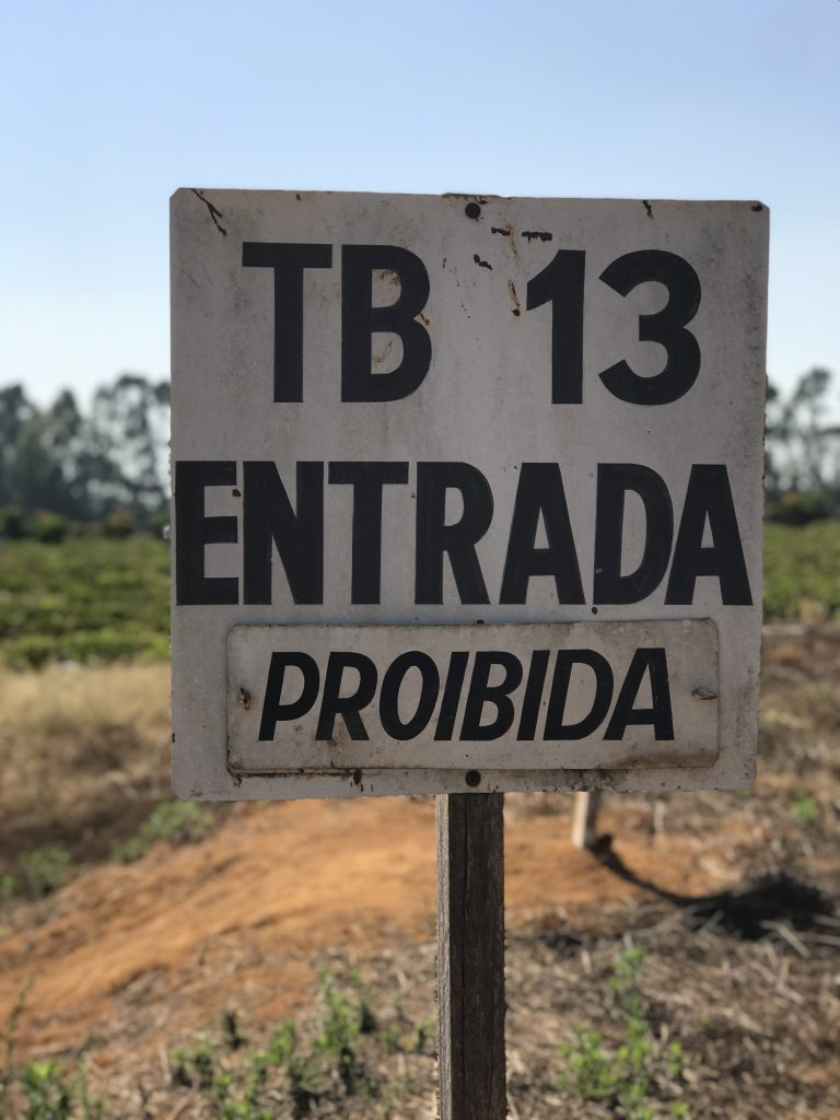"White sign with black letters on a stake in front of a coffee plot which reads: ""TB 13 Entrada Proibida"""